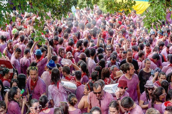 San Vino Wine Fight​,